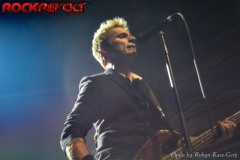 Green Day (12)