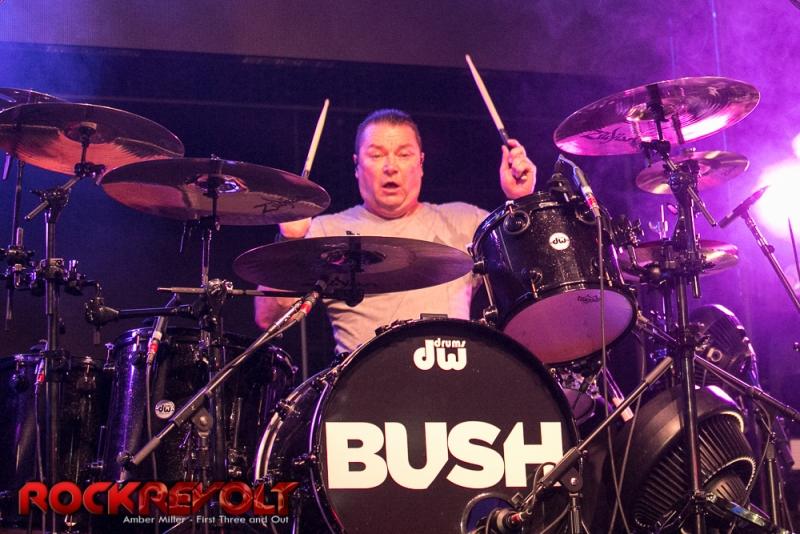 Bush-1006
