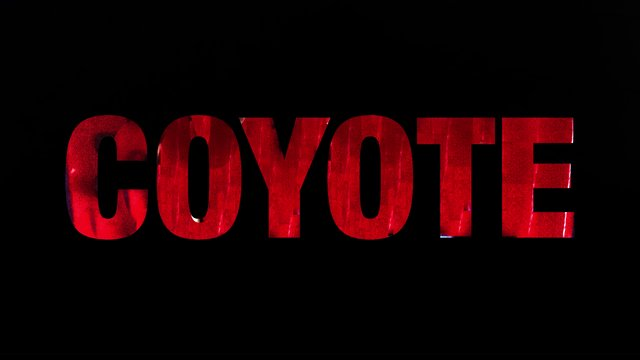 MOVIE REVIEW: COYOTE