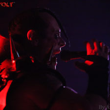 CONCERT PHOTOS: THE MISFITS